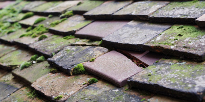 Elcocks Brook roof repair costs